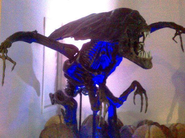 """Im Film """"Alien"""" sind die Außerirdischen räuberisch und gleichzeitig Brutparasiten."""