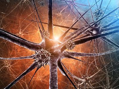 Wenn die Immunabwehr irrtümlich eigene Zellen und Gewebe angreift, sind schwere Krankheiten die Folge.