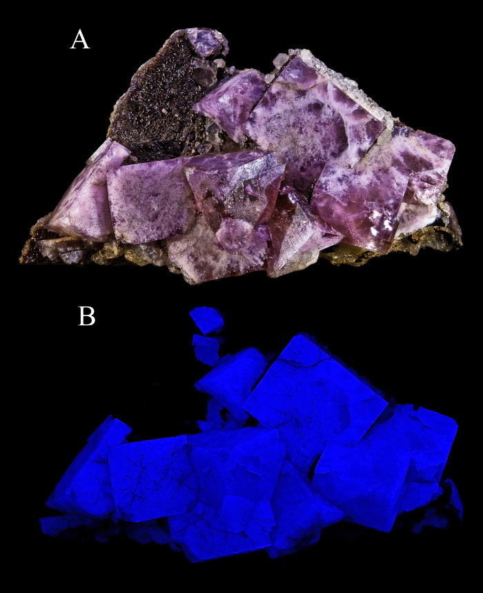 """<span class=""""img-caption"""">Das Mineral Fluorit leuchtet unter UV-Licht blau.</span> <span class=""""img-copyright"""">© Didier Descouens, <a href=""""http://creativecommons.org/licenses/by/4.0"""" target=""""_blank"""" rel=""""noopener noreferrer"""">CC-by-sa 4.0</a></span>"""