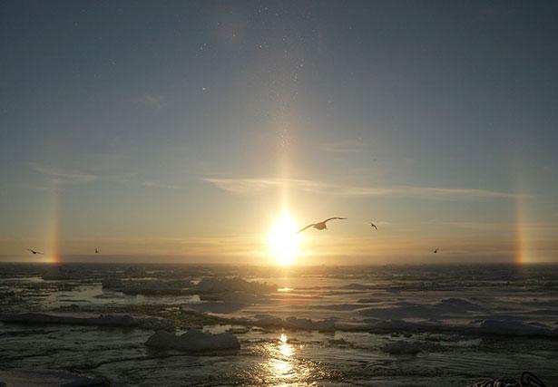 Ob die einzigartige Umwelt der Arktis vor künftigen Ölunfällen bewahrt bleibt, hängt auch vom Rohstoffhunger der Menschheit ab.
