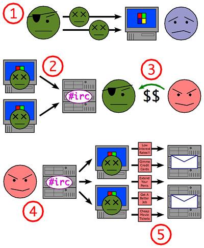 Funktionsprinzhip eines Botnetz-Angriffs