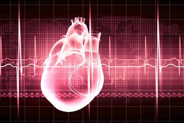 Lebenswichtiger Muskel: Das Herz pumpt Blut durch unseren Körper, um ihn mit Sauerstoff und Nährstoffen zu versorgen.