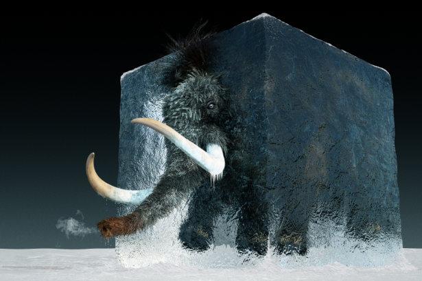 Rückkehr aus dem Eis: Streift das Mammut bald wieder über diesen Planeten?