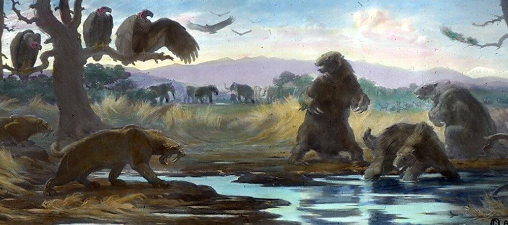 Mitten in Los Angeles gibt eine Fossilfundstätte einzigartige Einblicke in die eiszeitliche Lebenswelt. © Case Western Reserve University/ Charles Knight