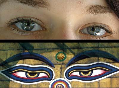 Schon das Bild eines beobachtenden Augenpaares wirkt  kooperationsfördernd