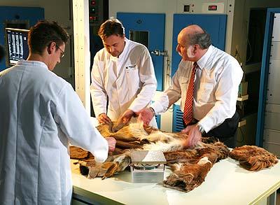 Kleidung von Ötzi im Test