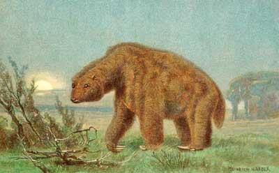 Megatherium: Das große Tier aus Amerika