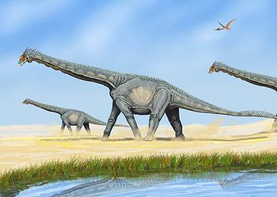Wie schwer waren die gigantischen, pflanzenfressenden Sauropoden wirklich?