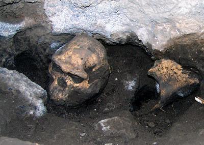 Der 1.8 Millionen Jahre alte Schädel eines Frühmenschen vor Ort in Dmanissi.