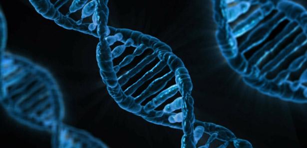 Angeboren oder antrainiert: Wie viel entscheiden unsere Gene über sportliches Talent?