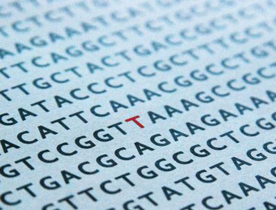 Ein veränderter Buchstabe im genetischen Code