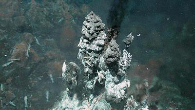 Oase mitten in der atlantischen Tiefsee: 360°C-heiße Quelle in rund 3.000 Meter Wassertiefe