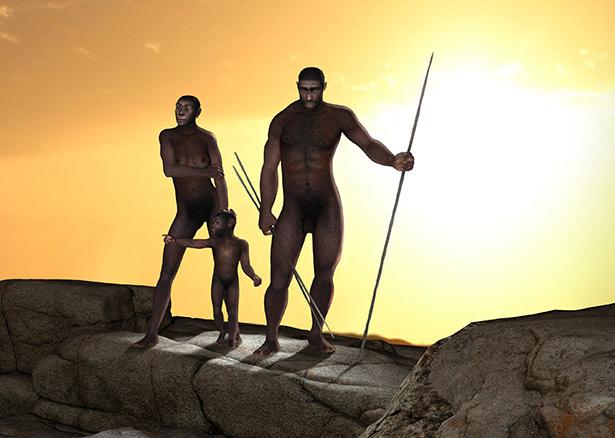 In den letzten zwei Millionen Jahren haben sich mehrere unterschiedliche Frühmenschenarten entwickelt. Aber nur der Homo sapiens hat bis heute überlebt