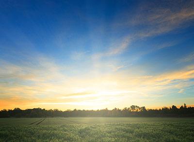 Licht am Morgen stellt unsere innere Uhr und könnte auch beim Abnehmen helfen