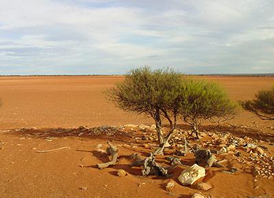 Dürren und Wassermangel nehmen schon jetzt zu