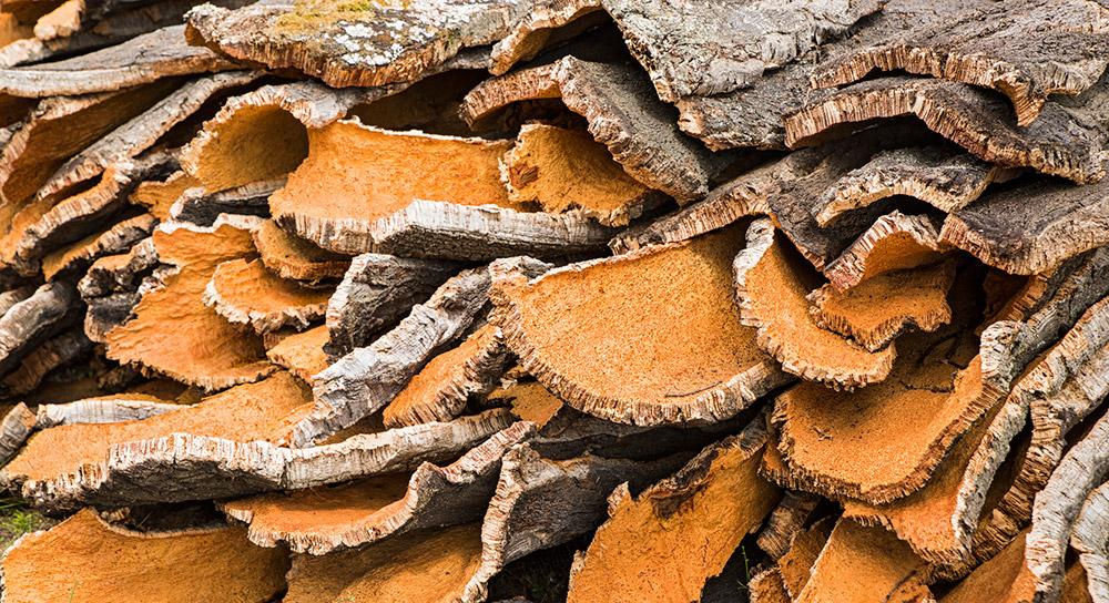 Kork - ein oft unterschätztes Bio-Material. © guenterguni/ Getty images