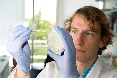 Krebsforscher Armin Ehninger betrachtet eine Petrischale, in der Bakterien wachsen.