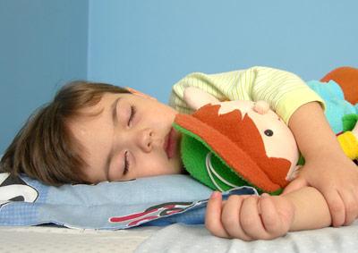 Im Schlaf rekapituliert das Gehirn bestimmte Aktivitätsmuster