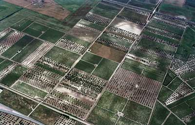 Heutige Felder, unter denen die römischen Felder hervortreten