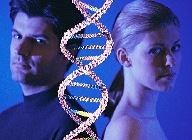 Erst in Kombination mit den Hormonen bestimmen die Gene und Geschlechtschromosomen das Geschlecht des ungeborenen Kindes.