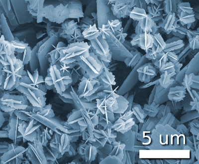 Nano-Vanadiumoxid-Partikel - möglicherweise lösen auch sie Zellstress aus.