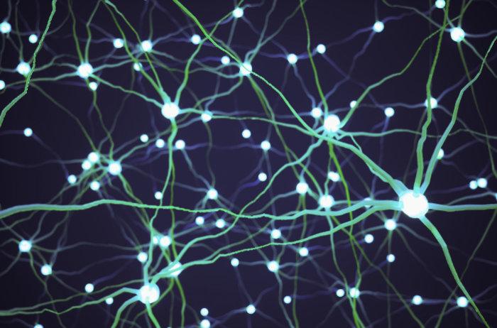 """<span class=""""img-caption"""">Neuroparasiten haben es auf die Nervenbahnen und Gehirne ihrer Opfer abgesehen.</span> <span class=""""img-copyright"""">© imaginima/ istock</span>"""