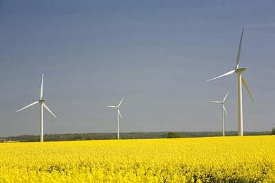 Es kommt darauf an, aus welchen Anlagen der Stromanbieter die Zertifikate erwirbt.
