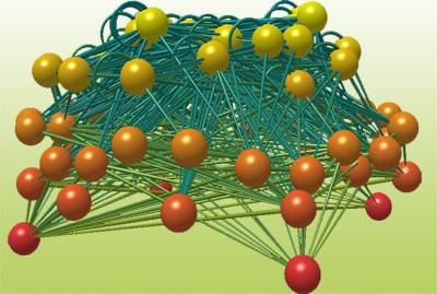 Modell eines Beziehungsnetzes in einem Ökosystem