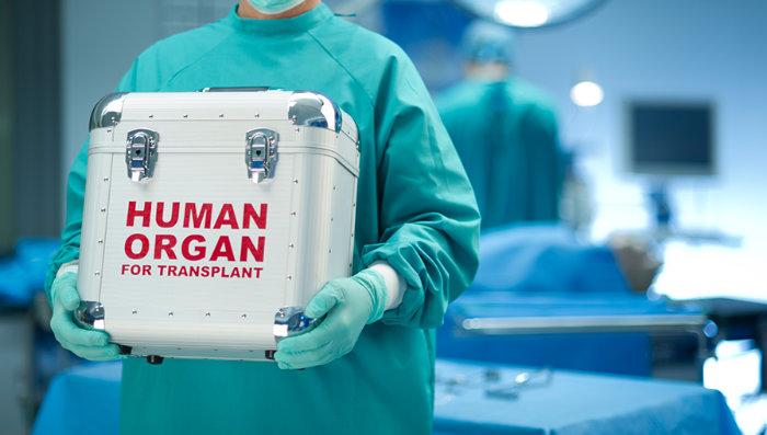 Das Thema Organtransplantation stellt Forscher bis heute vor große Herausforderungen. © Sturti/ istock