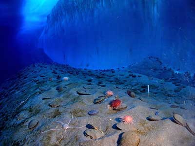 Eiswand und Meeresboden im Südlichen Ozean