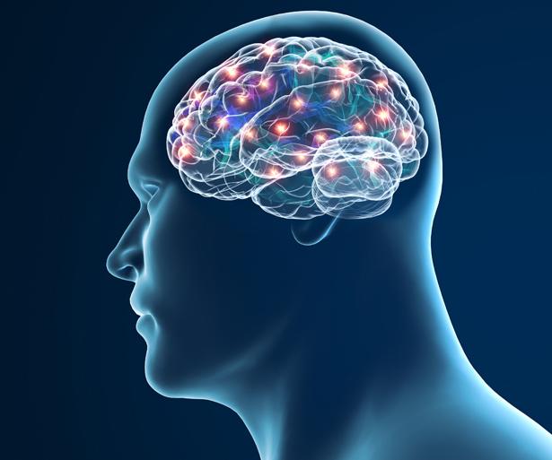 Rätselhafter Hirnschwund: Bei Parkinson sterben Nervenzellen im Gehirn ab.