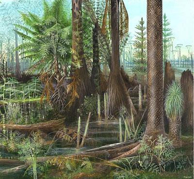 Regenwald vor 300 Millionen Jahren
