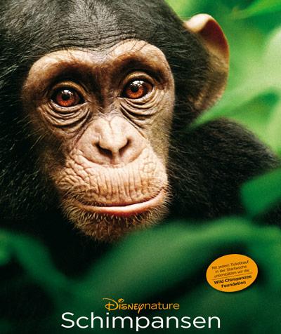 Schimpansen - Wie viel Realität steckt in dem neuen Film von Disneynature?
