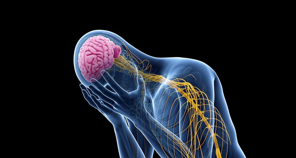 Schmerz ist wie alle unsere Sinneswahrnehmungen eng mit unseren Emotionen und Erwartungen verknüpft. © SciePro/ Getty images