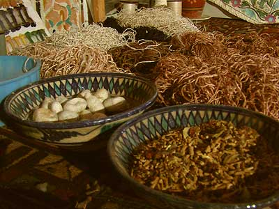 Seidenraupen, Kokons und gesponnene Seide