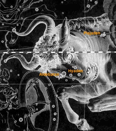 Sternbild des Stieres mit Hyaden und Plejaden