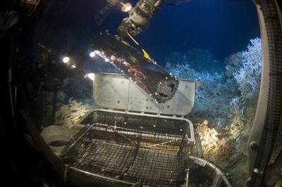 Erkundung der Tiefsee mit Tauchrobotern.
