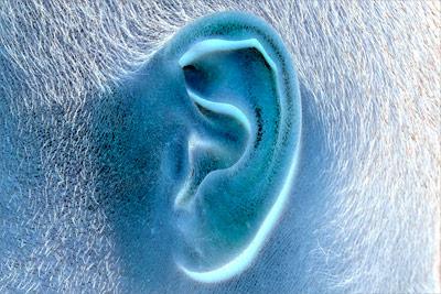 Tinnitus - nervötend aber nicht heilbar