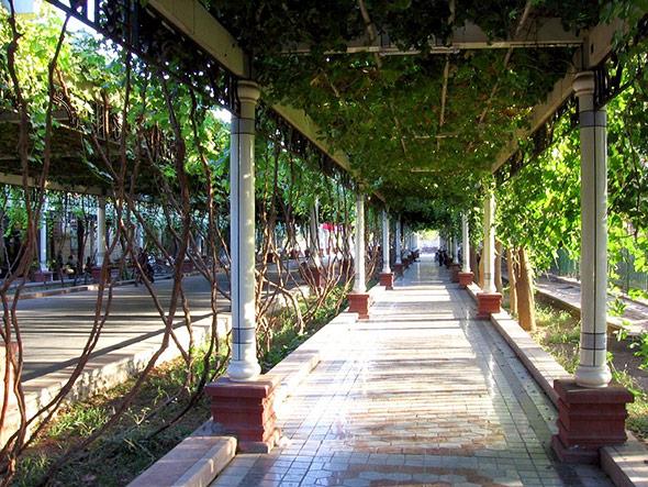 Von Weinlaub beschattet: Straße im heutigen Turfan