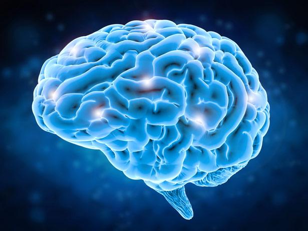 Was passiert beim Phantomschmerz im Gehirn?