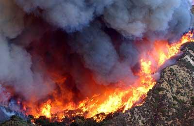 Waldbrand-Katastrophe in Kalifornien