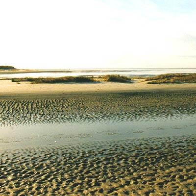 Wattenmeerküste