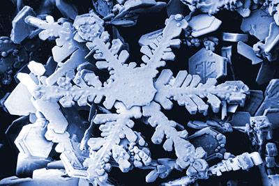 Schneekristall unter dem Raster- Elektronenmikroskop