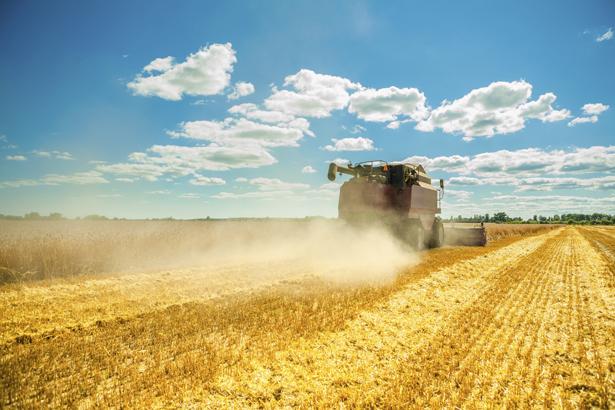 Wie kann die Landwirtschaft ihre Produktivität steigern?