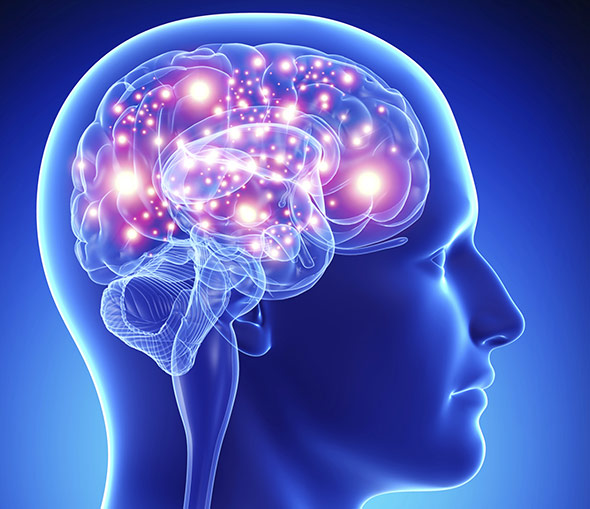 Auch der Placebo-Effekt führt zu messbaren Effekten im Gehirn