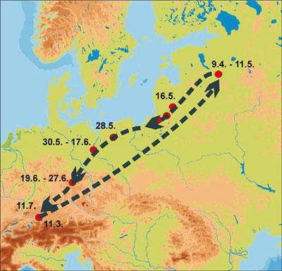 Wanderung eines Stockenten-Erpels, der vom Bodensee nach Russland und zurück verfolgt werden konnte.