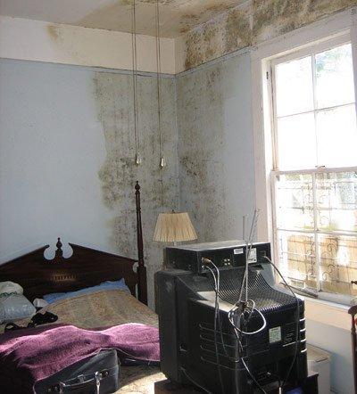 zusammenhang zwischen feuchten wohnbedingungen und asthma. Black Bedroom Furniture Sets. Home Design Ideas