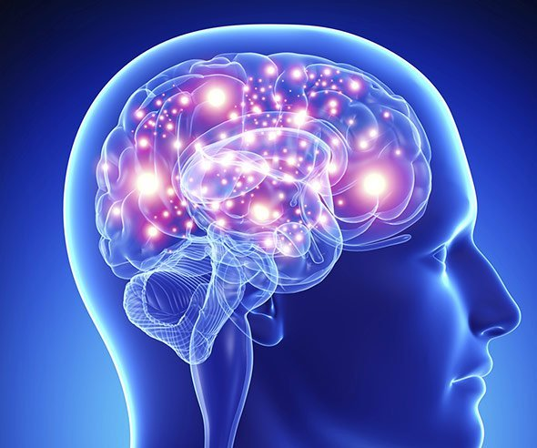 Alkohol Gehirn Langfristig