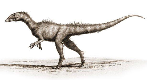 Dinosaurier Jura