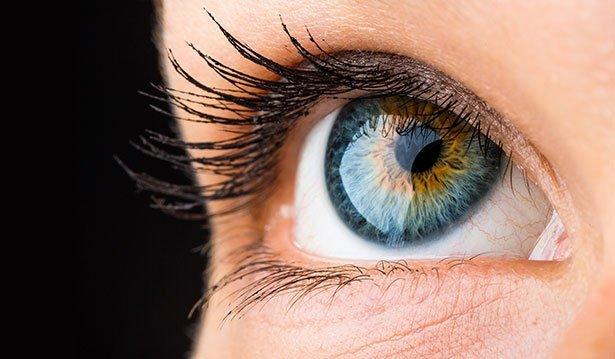 Neue Augenlinse